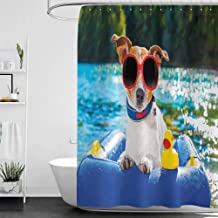 homecoco Shower Curtains for Bathroom Funny,Jack Russell Dog with Sunglasses Sitting on The Lake Beach Puppy at Beach Picture,Multicolor W60 x L72,Shower Curtain for Shower stall