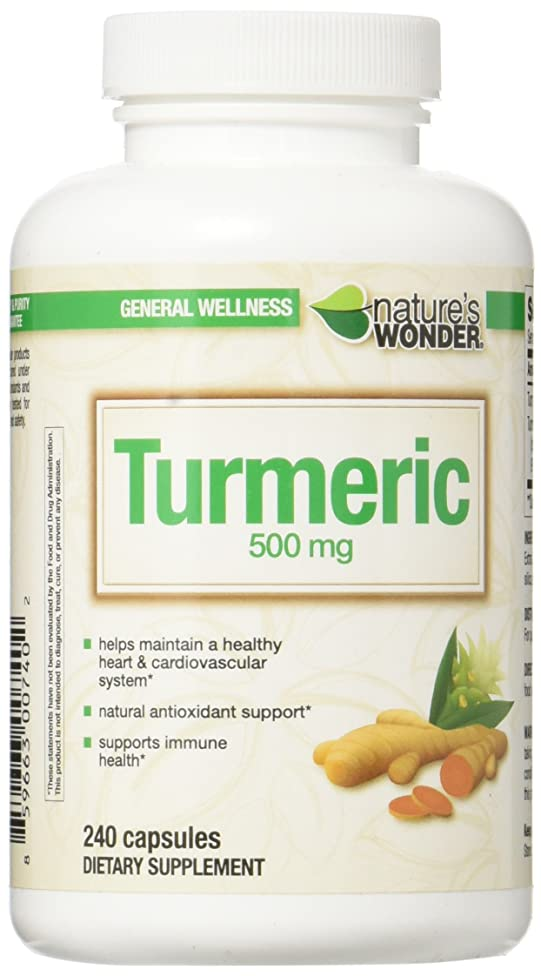 Nature's Wonder Turmeric 500mg Supplement, 240 Count
