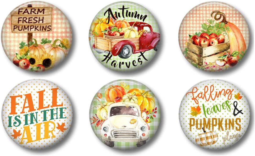 Red Truck Fall Indefinitely Decor Magnets with Pumpkins Branded goods for Farmho Apples and
