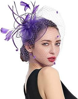 Women Fascinators Kentucky Derby Hair Clip Headband Wedding Tea Party Hat