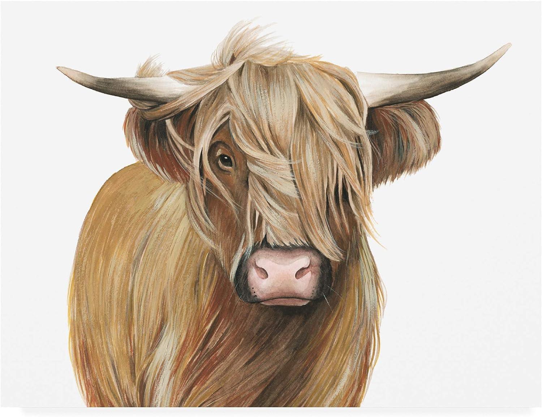 Trademark Fine Art Highland Cattle I by Grace Popp, 14x19