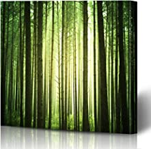 Ahawoso Canvas Prints Wall Art Printing 16x12 Pine Landscape Mystical Sun Fall Green Forest Through Nature Serene Forestry Park Tree Jungle Wood Painting Artwork Home Living Room Office Bedroom Dorm