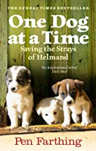 One Dog at a Time: Saving the Strays of Helmand - An Inspiring True Story