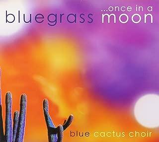 Best blue cactus choir Reviews