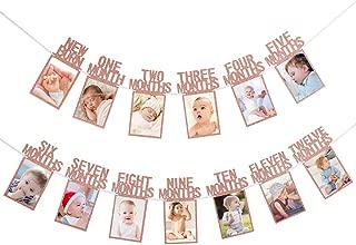 Glittery Baby Photo Banner Newborn to 12 Months 1st Birthday Banner- First Birthday Celebration Decoration Supplies(Rose Gold)