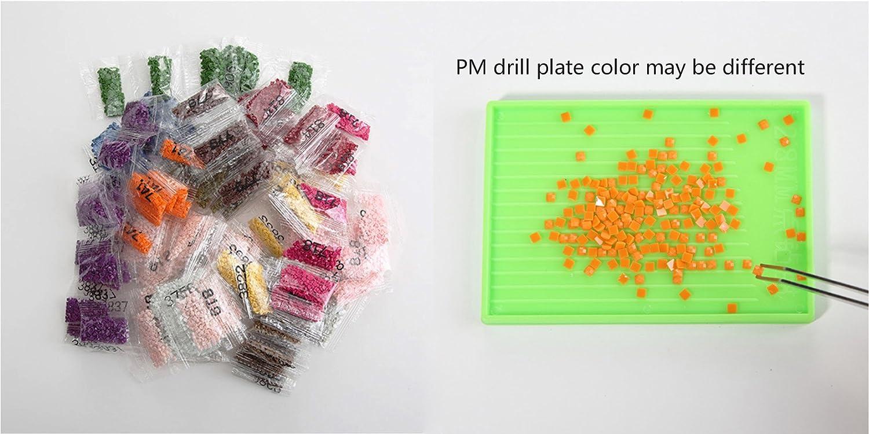 /animali/ 30 x 30 cm 5D DIY Diamond Painting kit di ricamo//strass incollato pittura//PUNTO croce/ /Cavallo /completo di diamanti quadrati e fare Tool/