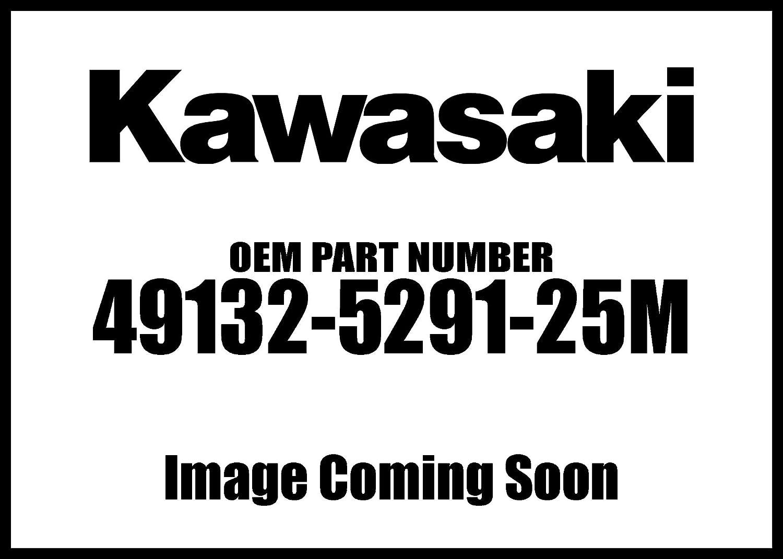 Kawasaki Surprise price 2017 Kx450f Shroud Engine Rh Max 48% OFF Gr New L Oe 49132-5291-25M