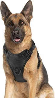 rabbitgoo Dog Harness, No Pull Dog Vest Harness with Shock-Absorbing Bungee Straps, Adjustable Dog Walking Harness with Ea...