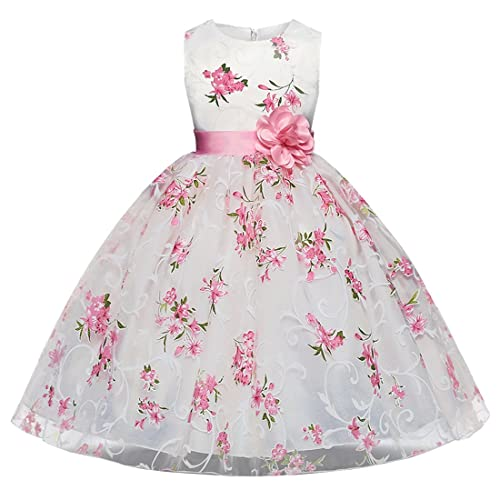 3e234fbcd9ac77 AnKoee Bambina Filati Netti Ricamo Fiore Vestiti da Cerimonia Eleganti  Senza Maniche Matrimonio Partito Comunione Abiti