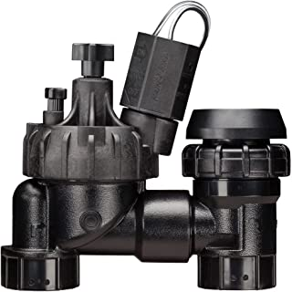 """Rain Bird JTVASF100 Jar Top Anti-Siphon Valve with Flow Control, 1"""" Threaded Female x Female (Discontinued by Manufacturer replaced with model # DASASVF100)"""