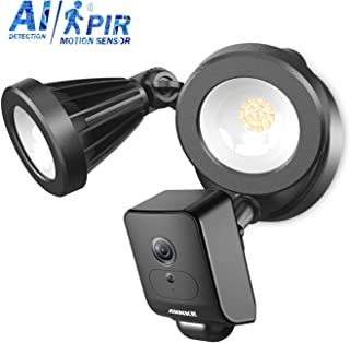 ANNKE Floodlight Camera 1080P AI Wireless WiFi Home Security System with PIR Motion Detection HD Live Streaming, 2 Way Talk and Siren Alarm, Cloud Storage Available with APP Alarm Push