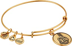 Alex and Ani - MLB® Cleveland Indians Charm Bangle