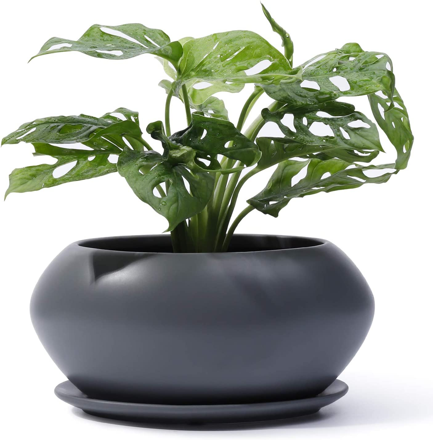 POTEY Ceramic Plant Flower Pots - Planter Medium Bonsai 6.9 Al sold out. NEW before selling ☆ Inch