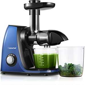 AMZCHEF Professional Slow Juicer, Vegetable & Fruit Juicer Machine, Two speeds, Silent motor ≤60dB, Cleaning brush & Juice jug Include, (150 Watts/Blue)