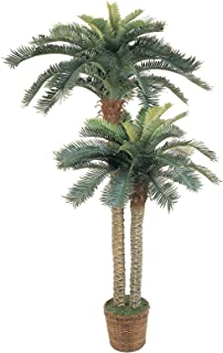 Artificial Tree -6 and 4 Foot Sago Palm Tree Double Potted