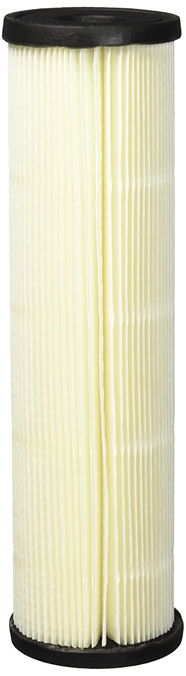 OmniFilter RS1SS 20 Micron 10 x 2.5 Comparable Sediment Filter 12 Pack