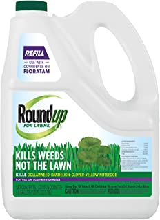 Roundup 5009010 Lawns Refill (Southern), 1 Gal