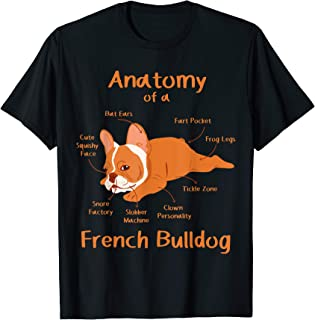Anatomy Of French Bulldog Clothes Frenchie Outfit Stuff Gift T-Shirt