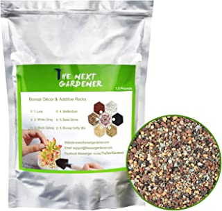 The Next Gardener Succulent and Cactus Soil Bonsai Gritty Mix, Pre-Mixed Faster Draining Blend, No Root Rot, 1.5lb