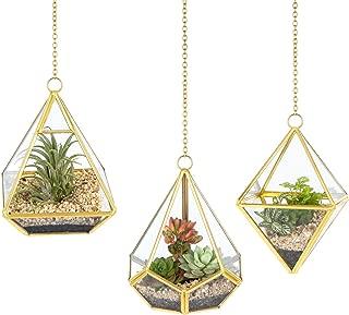 Mkono 3 Pcs Hanging Glass Terrarium Geometric Container Vertical Modern Planter Windowsill Decor DIY Display Box Centerpiece Gift for Succulent Fern Moss Cacti Air Plants Miniature Fairy Garden, Gold