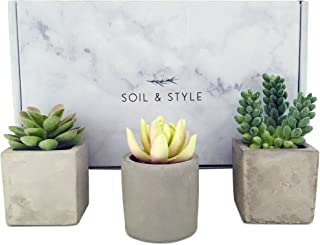 Soil & Style 3 Mini Artificial Succulent Plants Potted - Handcrafted Cement Pots - Small Artificial Plants - Fake Succulent Plants - Fake Plant Decor