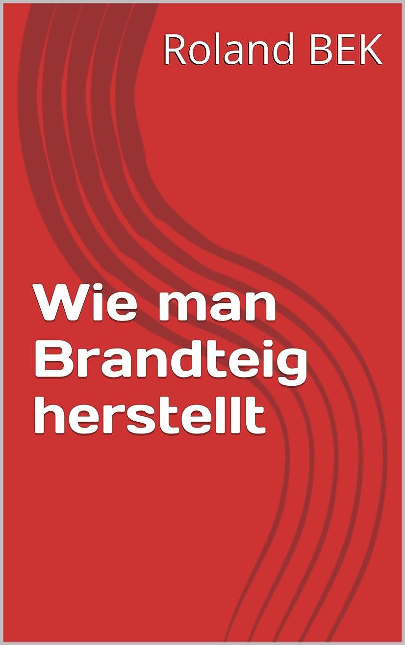 サリーレクリエーショントリップWie man Brandteig herstellt (German Edition)