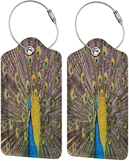 Small luggage tag Peacock Decor Collection Peacock Displaying Feathers Golden Vibrant Colors Eye Shaped Picture Print Quickly find the suitcase Mustard Turquoise Peru W2.7