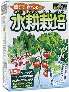 ちょこっと実験箱[おもちゃ 単品]おもしろ実験キット/育てて食べよう 水耕栽培