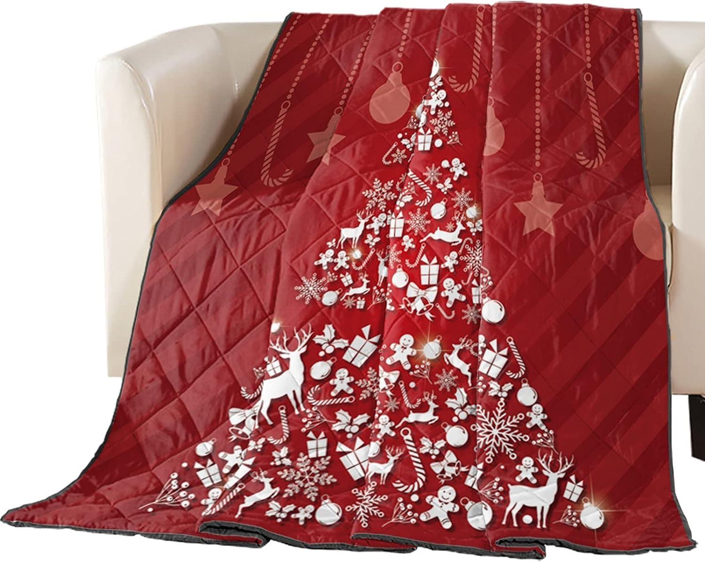Vandarllin Max 69% OFF Bedding Over item handling Down Alternative Comforters Full H Christmas