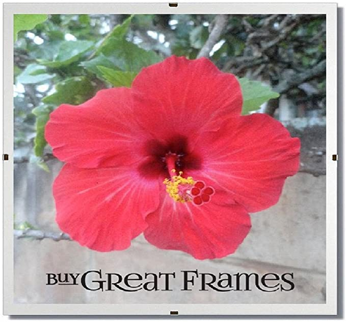 SET OF 6-12x16 GREATCLIP Glass and Clip Frames