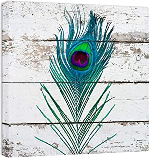 BOLUO Peacock Wall Decor Feathers Canvas Art Painting Framed Rustic Wood Texture Prints Bathroom Decorations 12 x12 Inch (Feather)