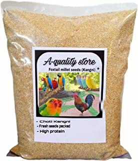 Quality Store Kangni Seed Bird Food (Brown) Foxtail Millet Seeds for Birds 5 kg