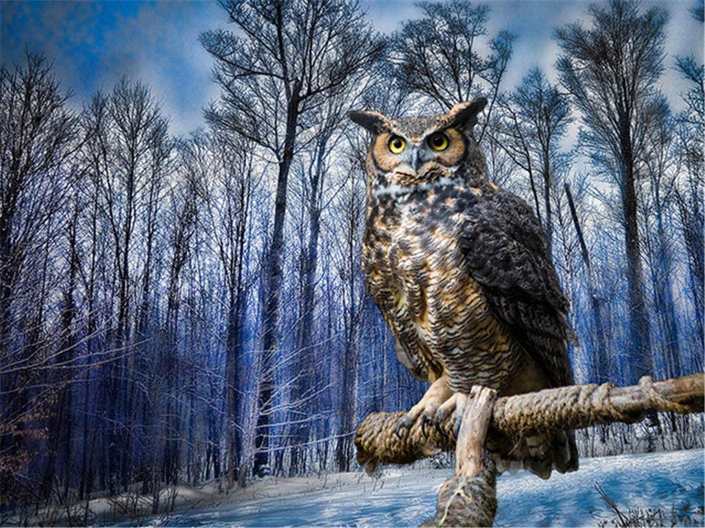 Diamond Painting Kits Forest Tree Ranking TOP17 28x72inch Fort Worth Mall Large 70x180cm Owl