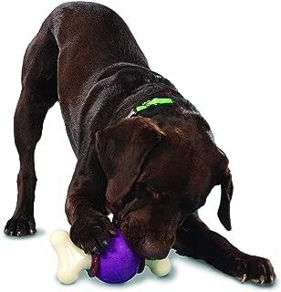 PetSafe Busy Buddy Bouncy Bone, Treat Holding Dog Toy, Small, Medium, Medium/Large and Large Sizes
