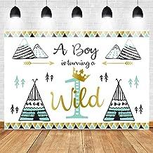 Mocsicka Wild One Backdrop 7x5ft Vinyl 1st Birthday Party Decoration Banner for Boys Photo Backdrops Bohemian Boho Themed Party Tribal Teepee Photography Background