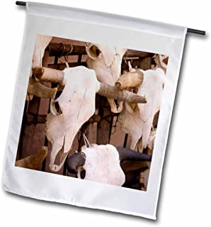 Best cattle skull for sale Reviews
