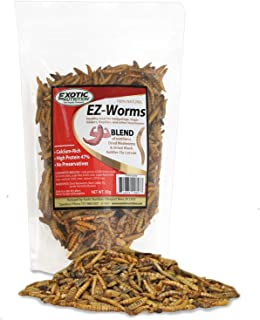 EZ Worms - Blend of Dried Mealworms & Black Soldier Fly Larvae (BSFL) - Healthy Insect Treat - Chickens, Bluebirds, Sugar Gliders, Hedgehogs, Squirrels, Skunks, Reptiles, Turtles, Fish