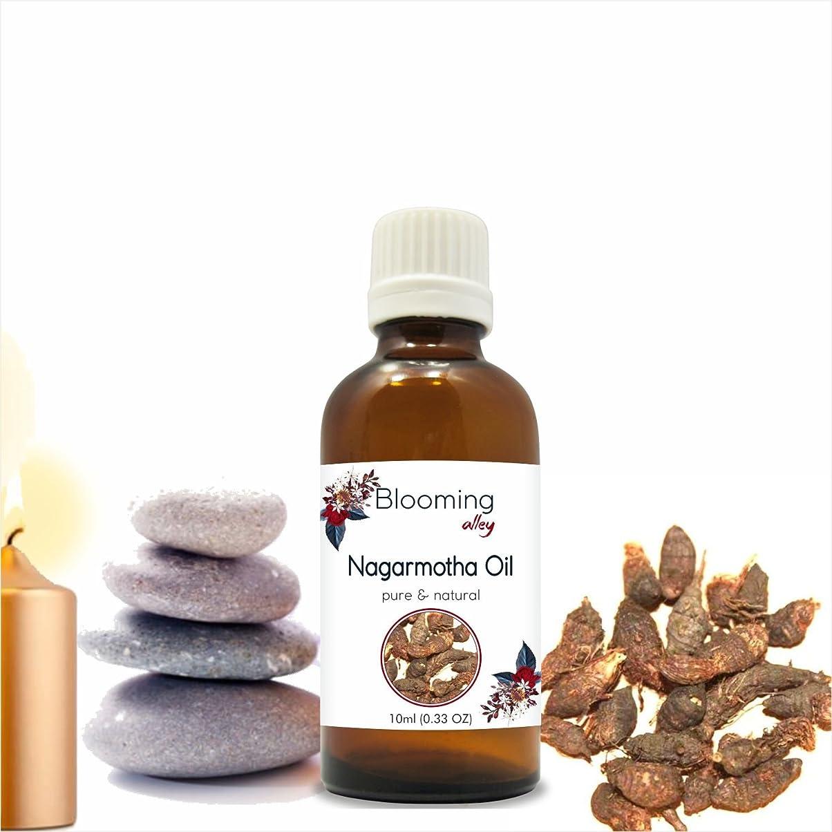 幽霊手錠キャンパスNagarmotha Oil(Cyprus Scariosus) Essential Oil 10 ml or 0.33 Fl Oz by Blooming Alley