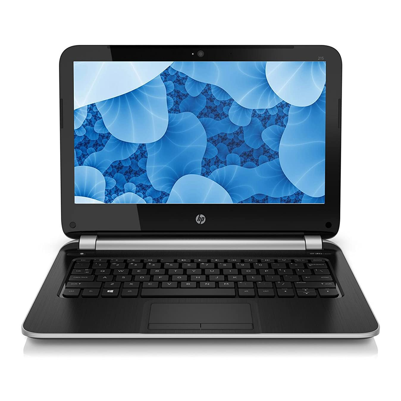 HP 215 G1 11.6 Inch Laptop AMD A6-1450 1.0GHz 8GB DDR3 Ram 320GB Hard Drive Touchscreen Windows 10 Professional (Renewed) gikqivvge