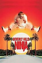 Classic Ninja Movies