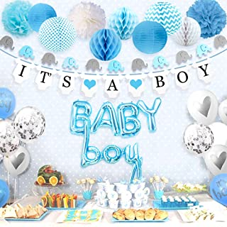 Sweet Baby Company Baby Shower Decorations For Boy With It'S A Boy Banner, Paper Lanterns, Honeycomb Balls, Paper Tissue P...