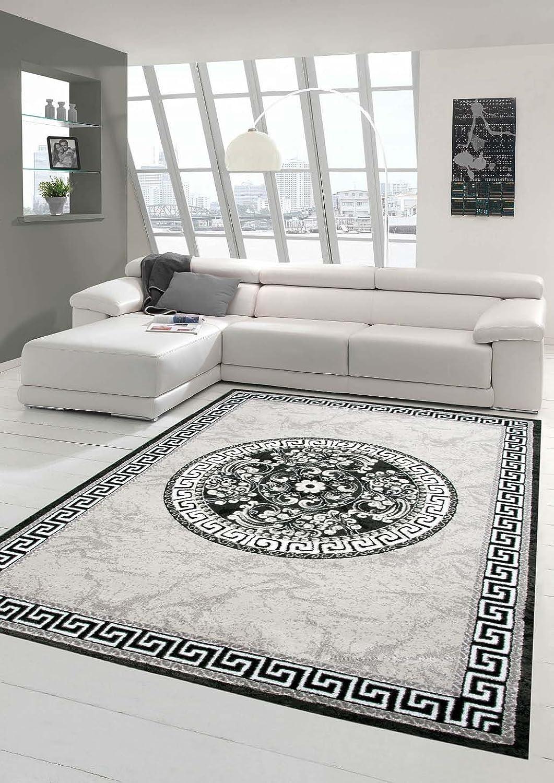 Traum Moderner Teppich Designer Teppich Orientteppich mit Glitzergarn Wohnzimmer Teppich mit Bordüre und Kreismuster in Grau Anthrazit Creme Gre 160x220 cm