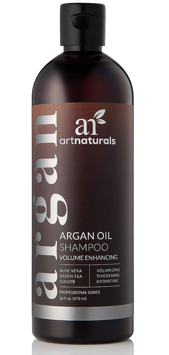 潮素朴な粒子アートナチュラルオーガニックアルガンオイル抜け毛予防シャンプー16オズ - 早期の抜け毛のための硫酸無料-Best治療、ビオチンと男性& Women-のため部分的に禿げている頭の間伐&ファーストサイン3ヶ月サプライ Art Naturals Organic Argan Oil Hair Loss Prevention Shampoo 16 Oz - Sulfate Free -Best Treatment for Premature Hair Loss, Thinning & First Signs of Balding for Men & Women- With Biotin 3 Months Supply