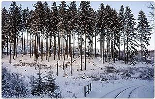 LESGAULEST Doormat Floor Rug/Mat (23.6 x 15.7 inch) - Wintry Resin Snow Winter Tree Wood Frost Nature