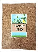 Best alpiste seed diet Reviews