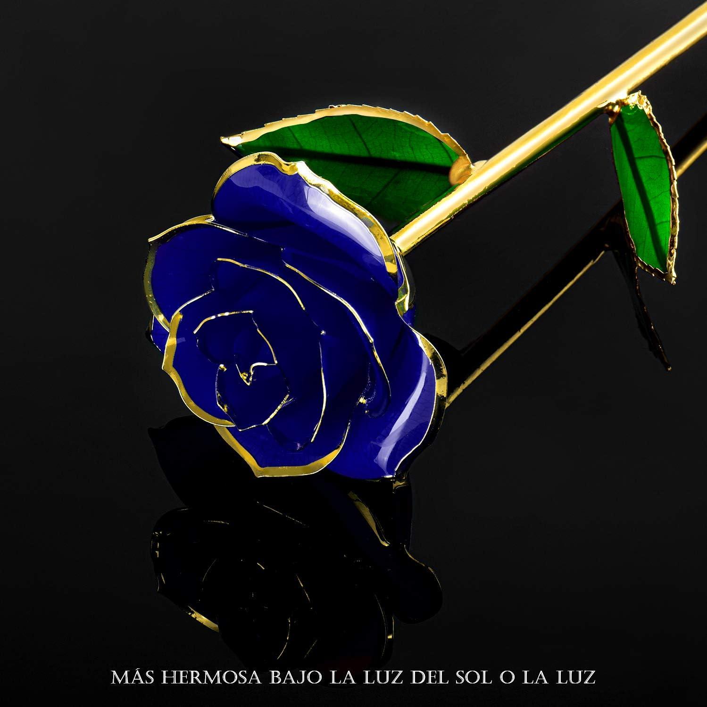 Cumplea/ños FORGIFTING Flores Rosa Roja Eterna Chapada de Oro 24K Navidad 1 Tarjeta de Felicitaci/ón Valent/ín Regalo Originales para Mujer Madre Novia Padres en Aniversario con 1 Marco de Fotos