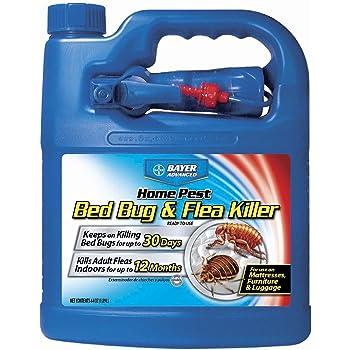 Amazon Com Eco Defense Bed Bug Killer Natural Organic Formula Fastest 16 Oz Garden Outdoor
