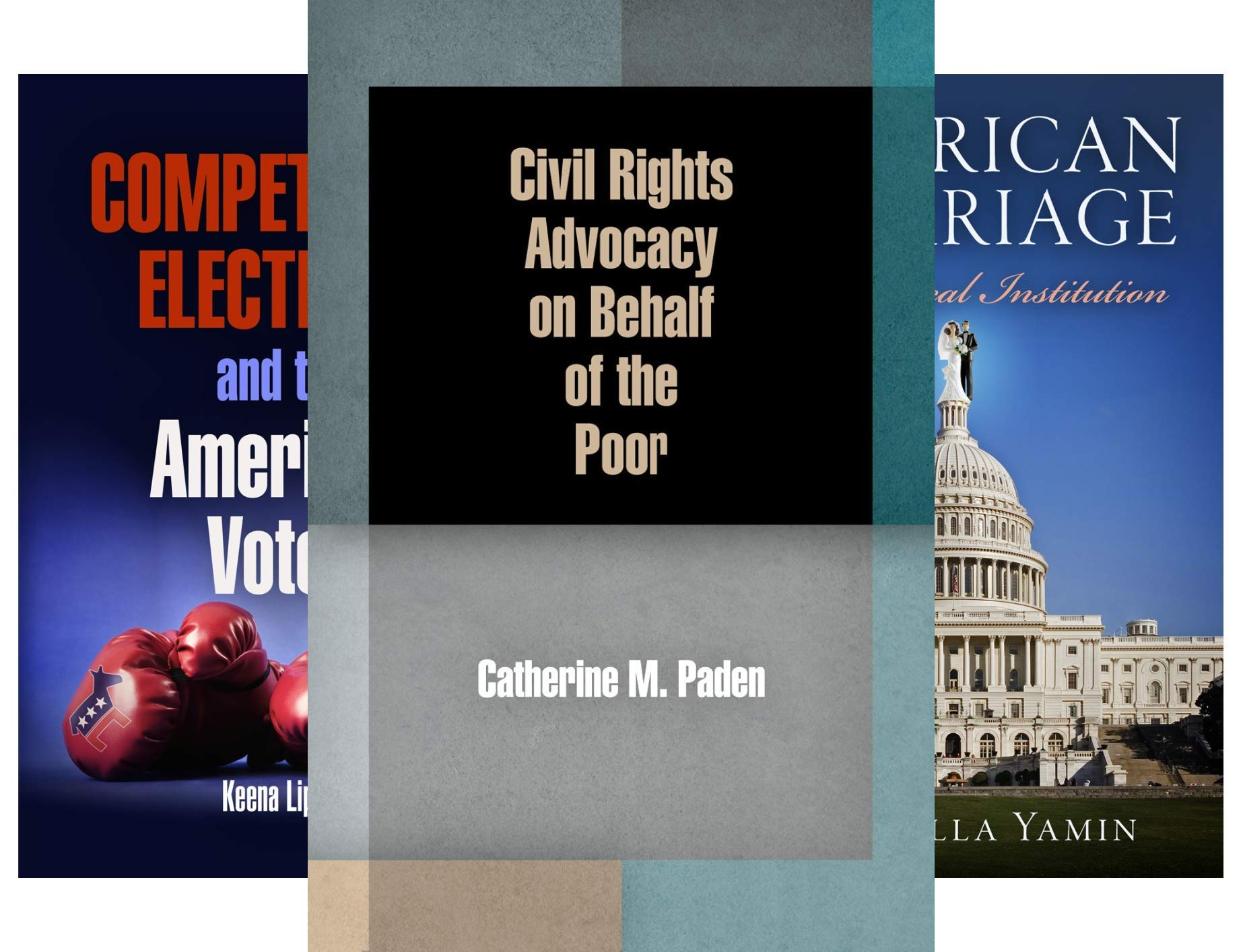 American Governance: Politics, Policy, and Public Law (19 Book Series)