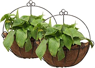 Best fence mounted hanging baskets Reviews