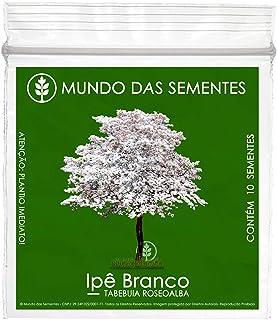 10 Sementes de Ipê Branco - Tabebuia roseoalba